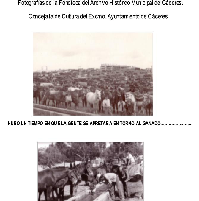 La feria Ganadera en la Memoria. Exposición Fotográfica