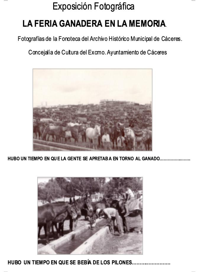 exposición fotografica Feria del ganado de Cáceres