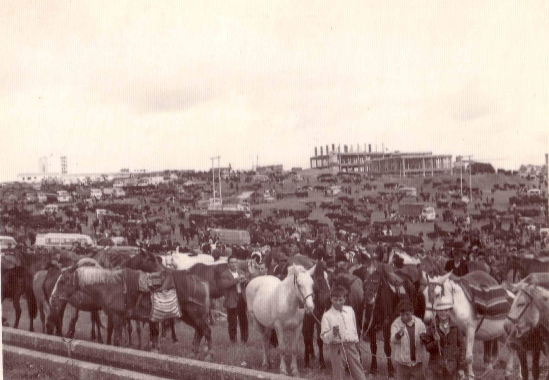 Feria de ganado en el Rodeo1950